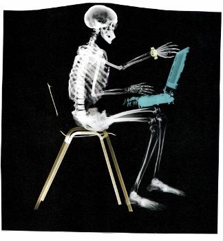 esqueleto_portatil_baja-324x350